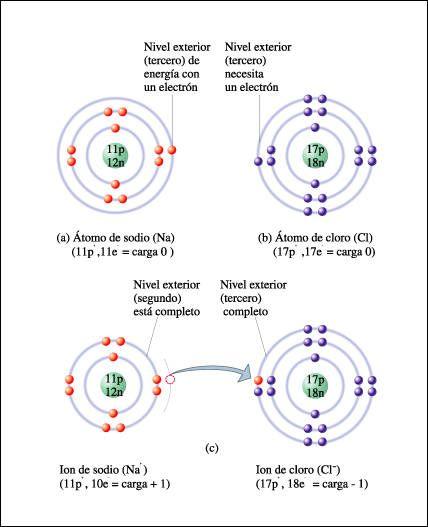Tomo de calcioel calcio es un elemento qumico de smbolo ca y de tomo de calcioel calcio es un elemento qumico de smbolo ca y de urtaz Image collections