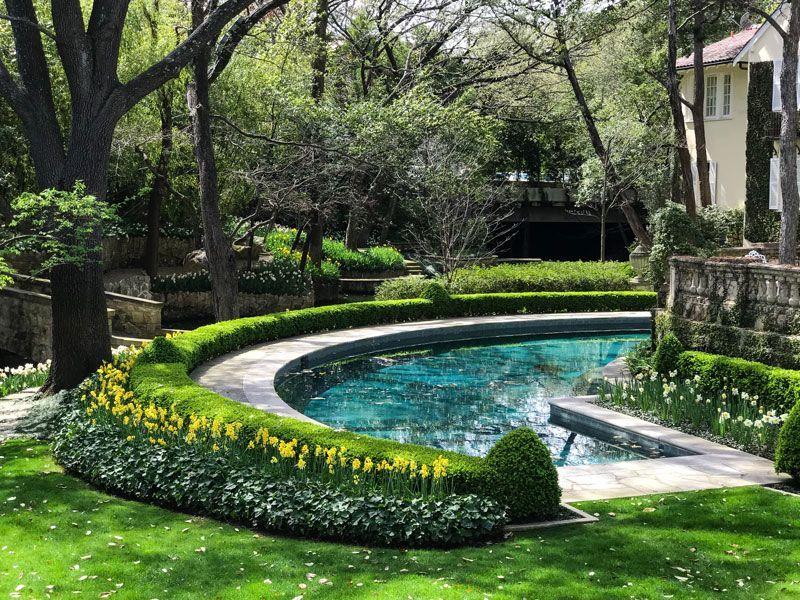 Inspiring Garden Design A Daffodil Landscape In Dallas Private Newport Garden Design Pool Landscape Design Backyard Landscaping Designs