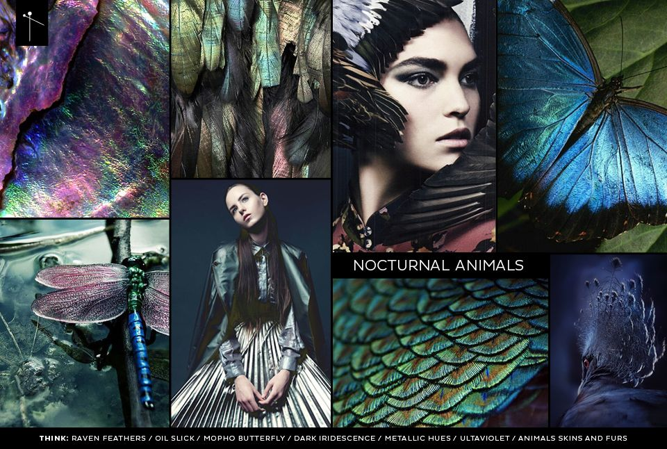 From fireflies and beetles to panthers and owls- 'Nocturnal Animals' is now open for submissions! http://bit.ly/frsnoctua