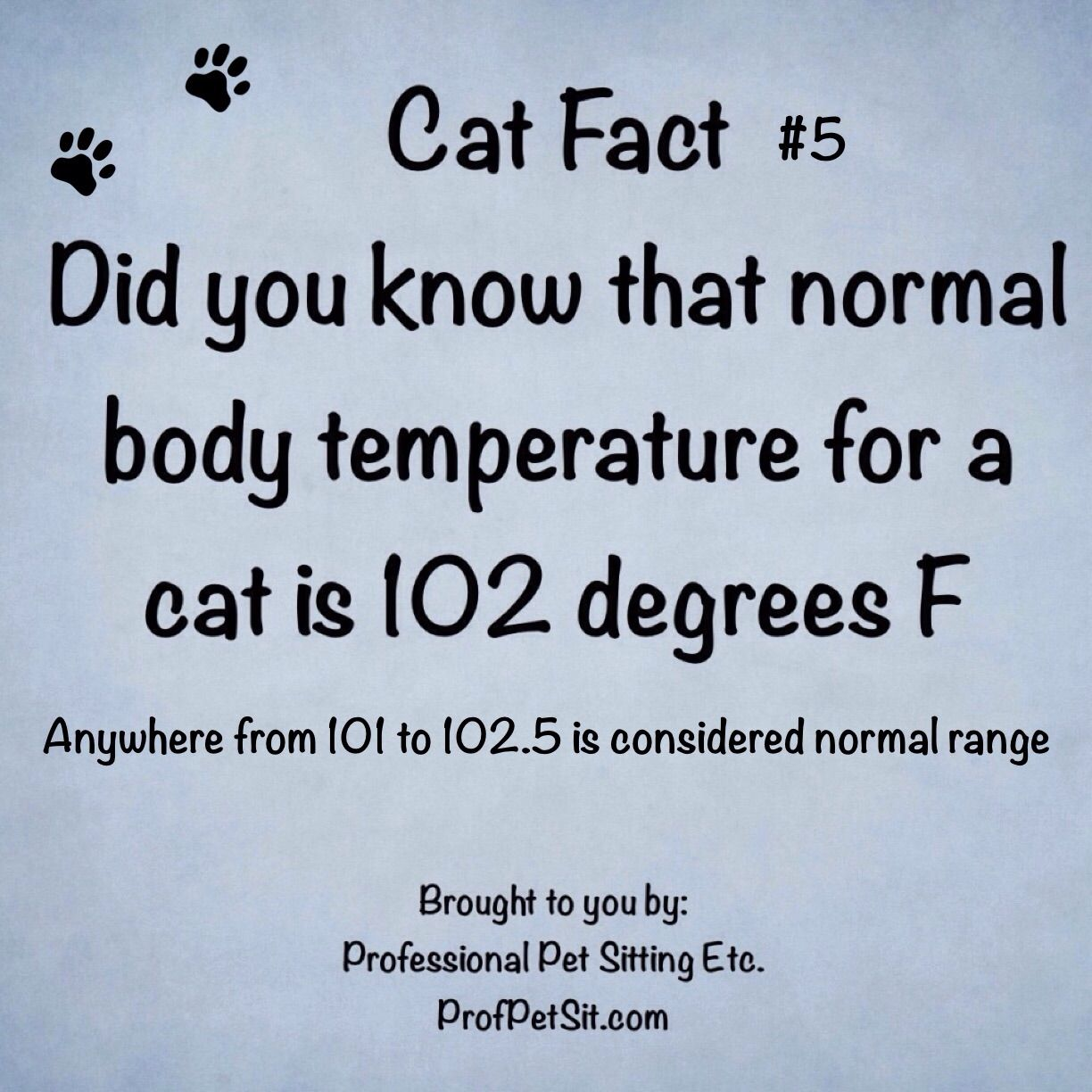 Did you know a normal body temperature for a cat is 102 degrees F