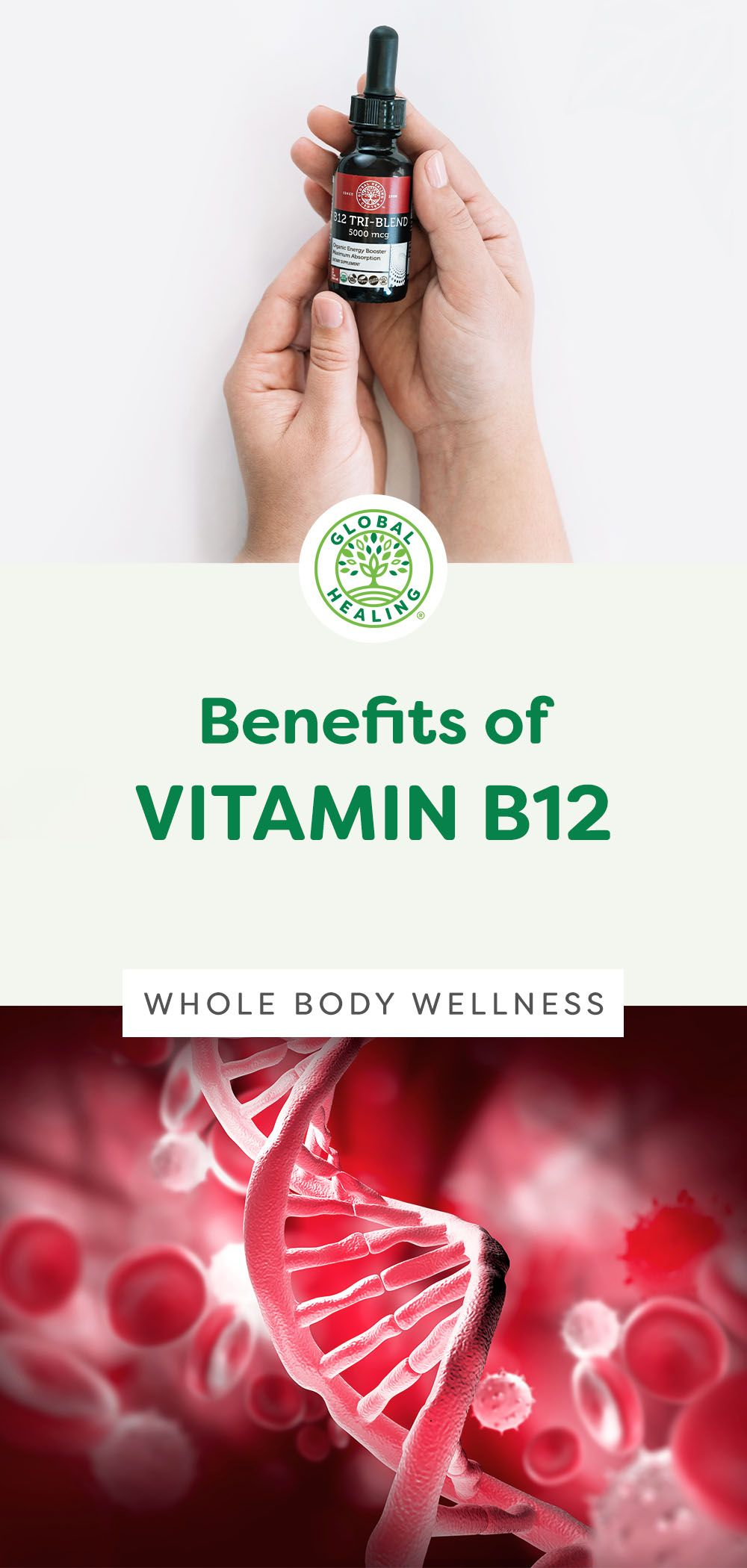 7 Important Functions of Vitamin B12 in 2020 Vitamins