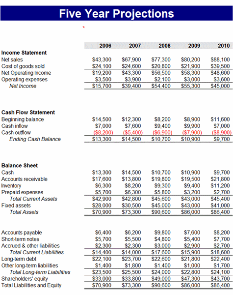 5 Year Business Financial Projections Business Budget