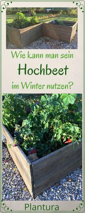 Hochbeet Im Winter Nutzen Ideen Tipps Garten Hochbeet Hochbeet Hochbeet Pflanzen