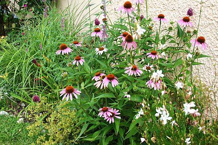 Gartenplanung Schöner Garten das ganze Jahr Garten und Pflanzen - schoner garten mit wenig geld