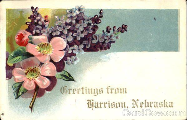 Greetings From Harrison Nebraska Flowers
