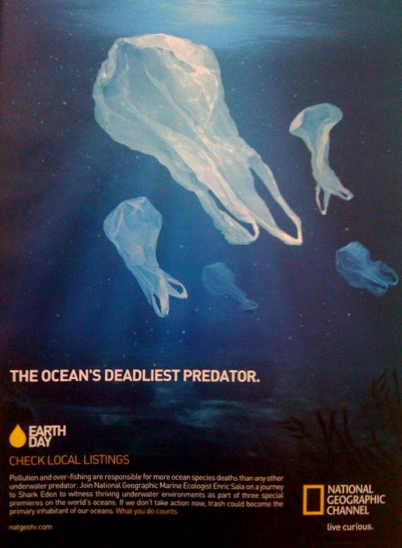 The Ocean S Deadliest Predator Curtesy Of The World S Most