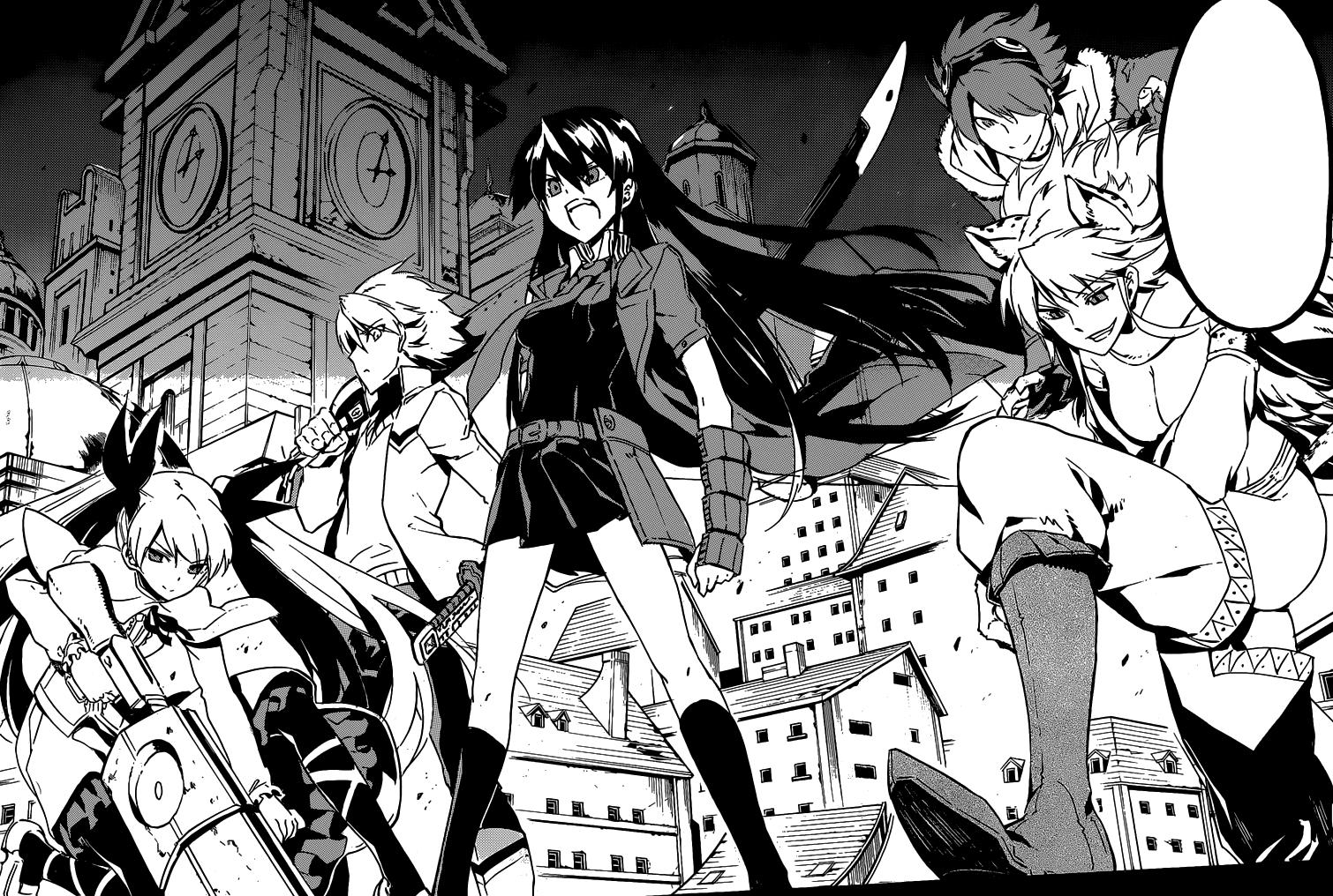 Image result for manga akame ga kill