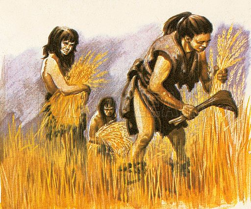 Neolithic Age | Ancient history, History, Ancient humans