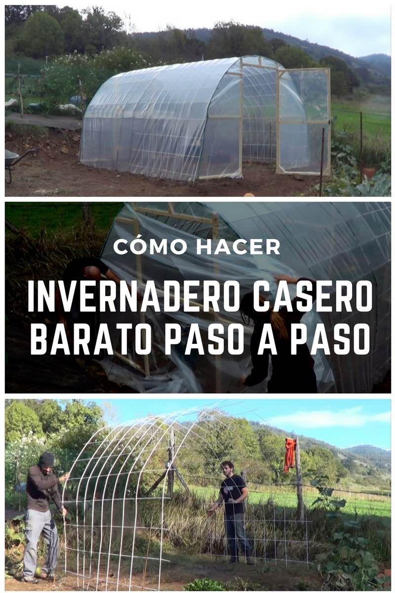 Monta tu propio invernadero casero barato paso a paso for Estanque prefabricado barato