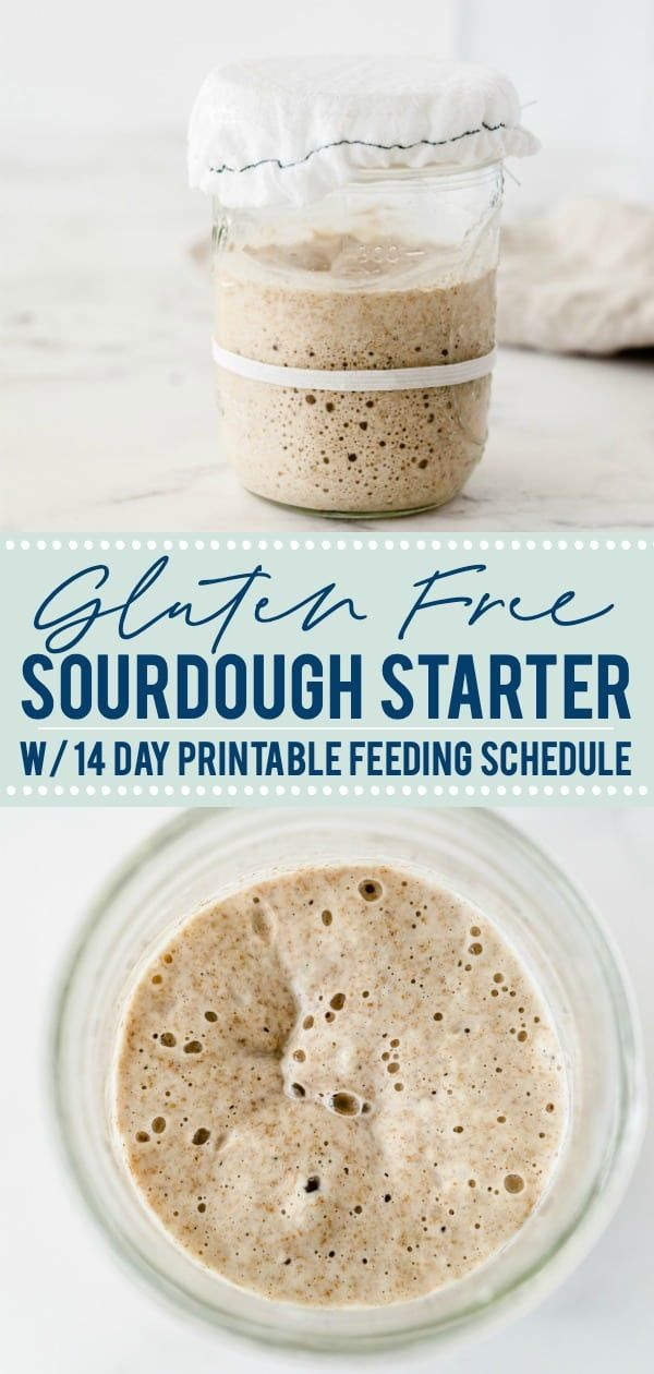 How to Make Sourdough Starter Gluten Free - What the Fork