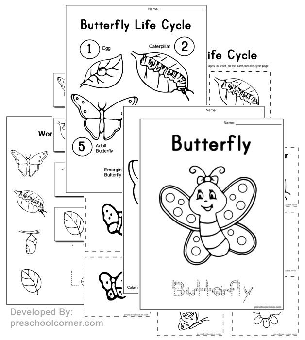 free preschool butterfly printables and crafts