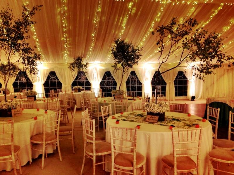 Our Beautiful Wedding Marquee With Trees And Fairy Lights