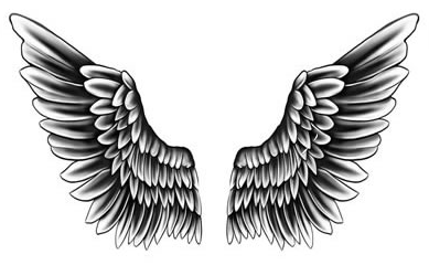 justin bieber wings tatoo. Black Bedroom Furniture Sets. Home Design Ideas