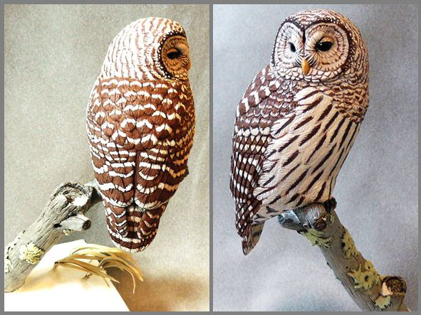 Barred owl tupelo wood carving artwork by tim mceachern