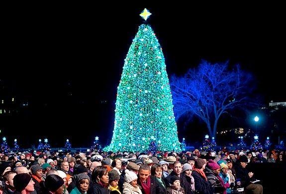 A Norwegian Christmas tree lights up Trafalgar Square Christmas