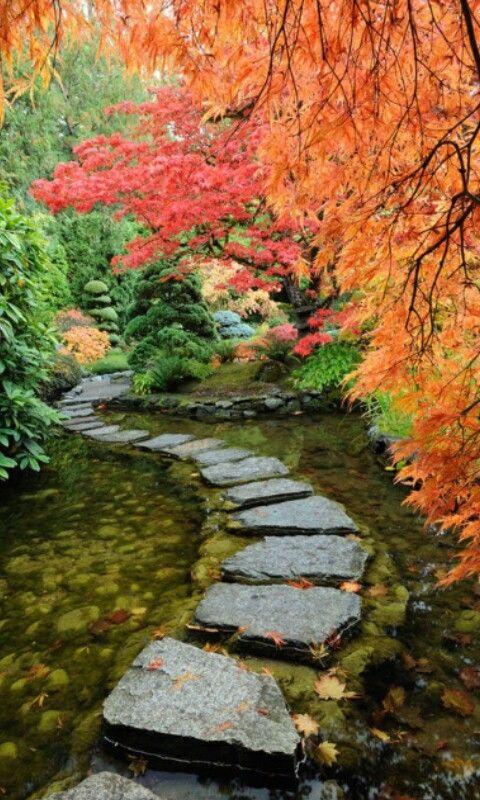 Pasos japoneses jardines bonitos jardines y paisajes - Paisajes y jardines ...
