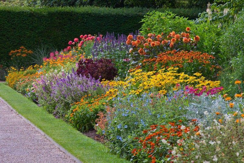 Plantas, Jardines y Vida Verde El Blog de La Tabla Paisajismo