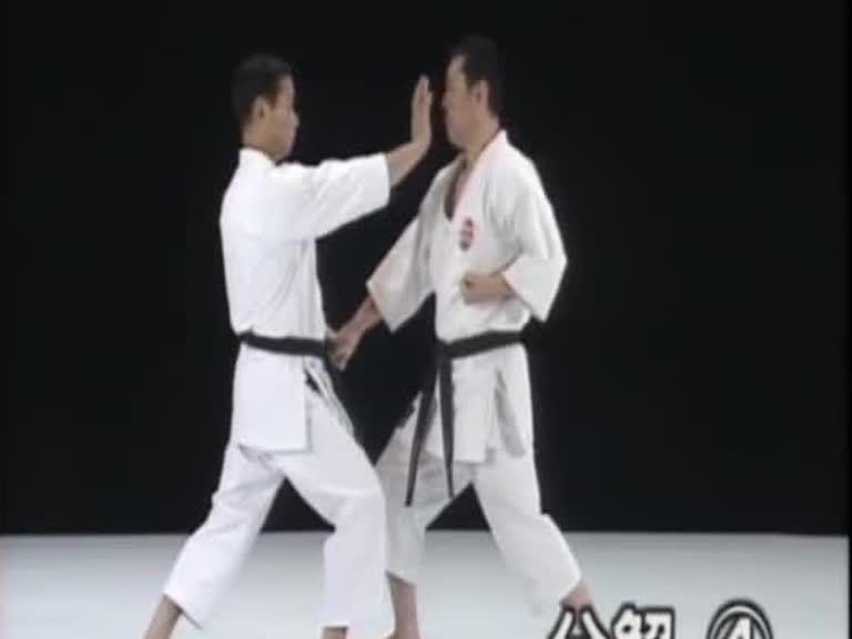Shisochin Bunkai Karate Kata Kumite Martial Arts