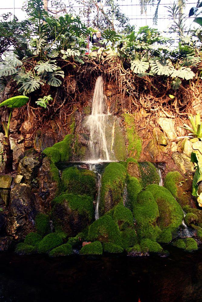 Trend Palmengarten Waterfall Ten fun things to do in Frankfurt blog from No Ordinary Homestead