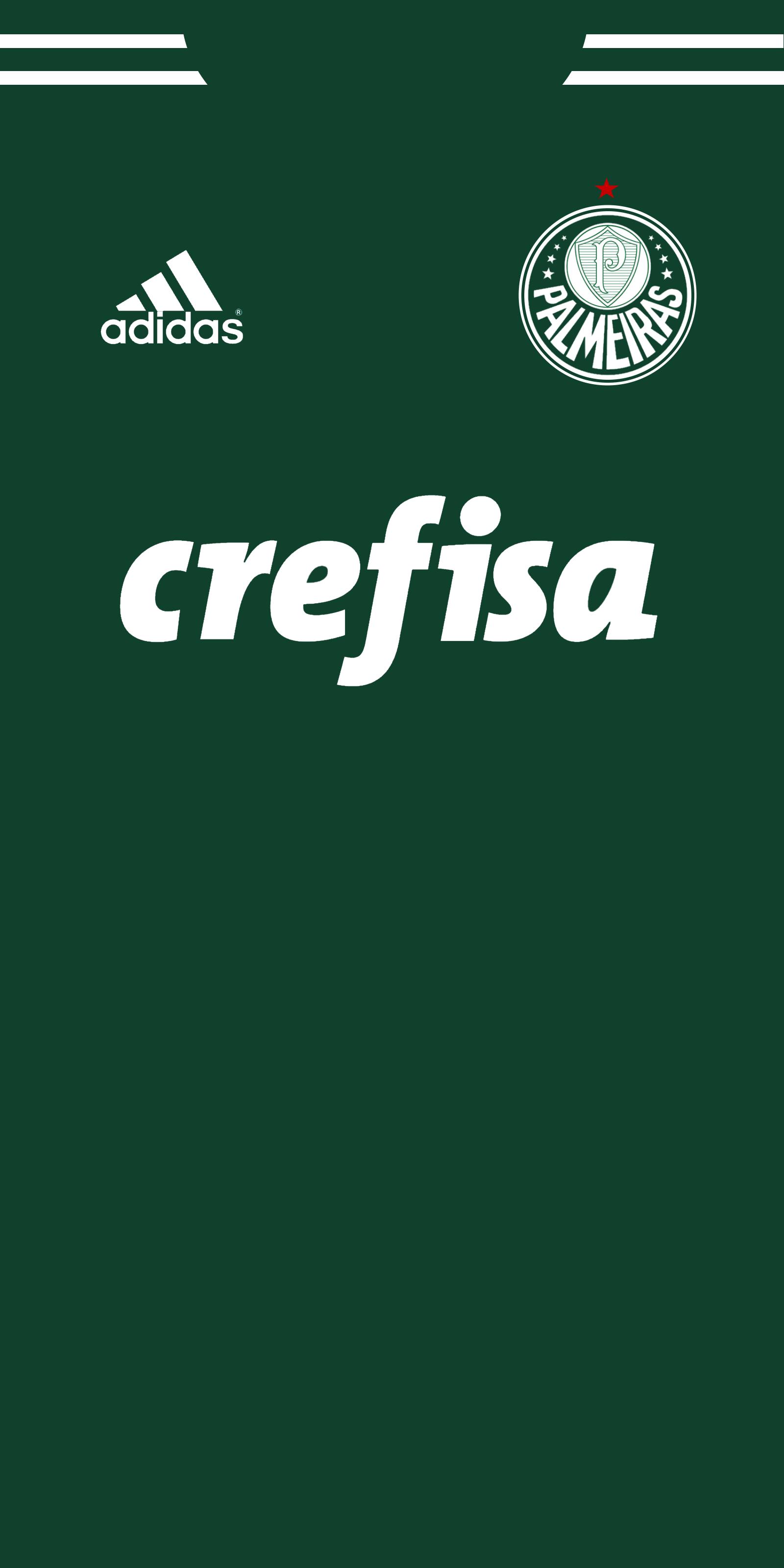 6fd0f42842 Pin de Gustavo em Palmeiras