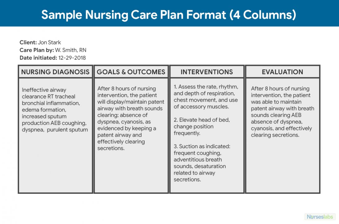 Mental Health Care Plan Template Download For Your Needs