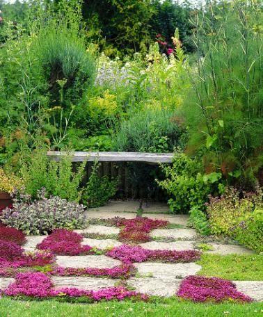 Fiori X Aiuole.Fiori Per Aiuole Idee Green Olivo Aiuole Giardino Giardinaggio