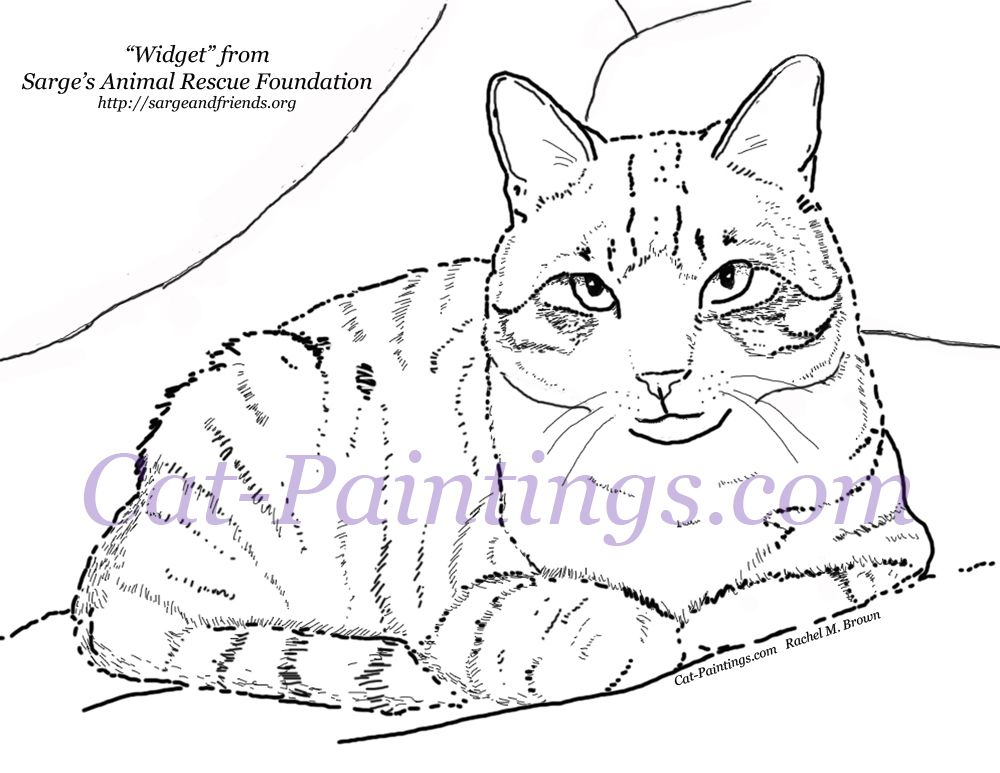 Free Coloring Page Printout Of Tabby Cat Rachel S Coloring Pages