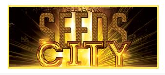 http://seeds.city/               Vertrauen und Sicherheit beim Hanfsamen kaufen mit paysafecard      Wenn man Hanfsamen im Internet kaufen will, muss man auf anonyme Zahlung achten. Mit paysafecard kann man anonym ohne zurückverfolgt zu werden hanfsamen bestellen