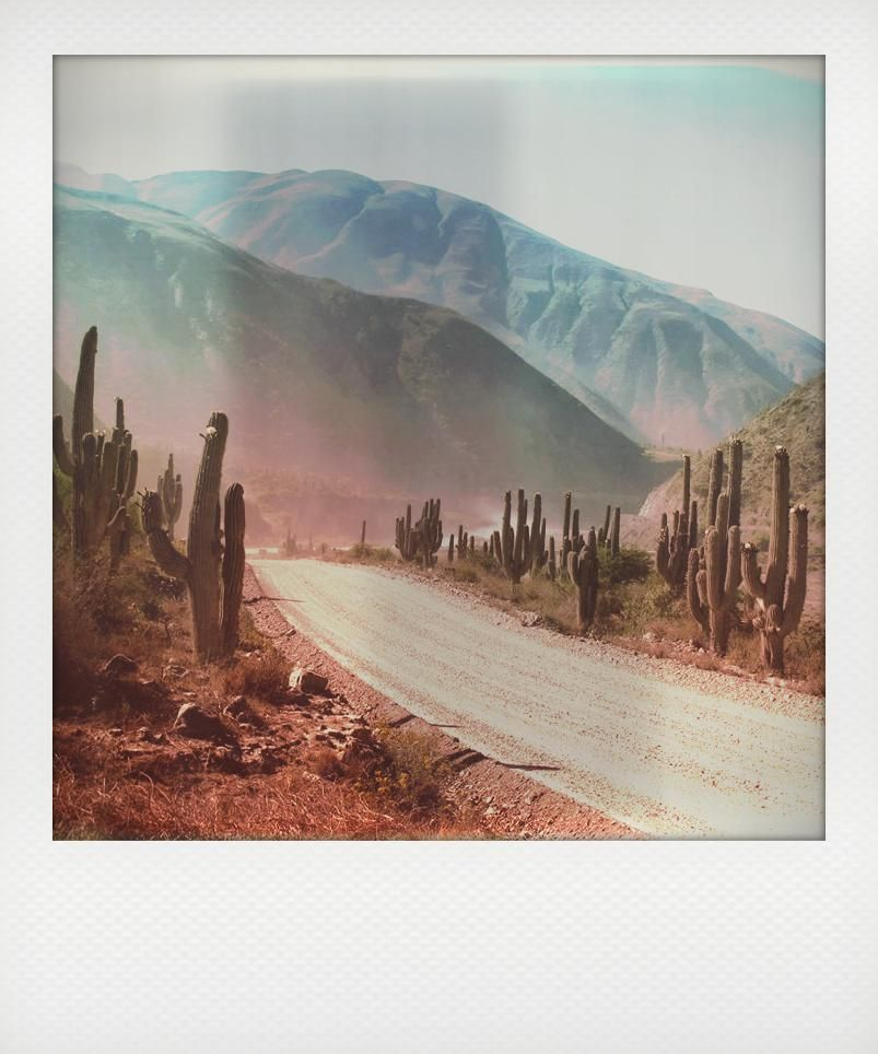 Desert road, Argentina | Wanderlust