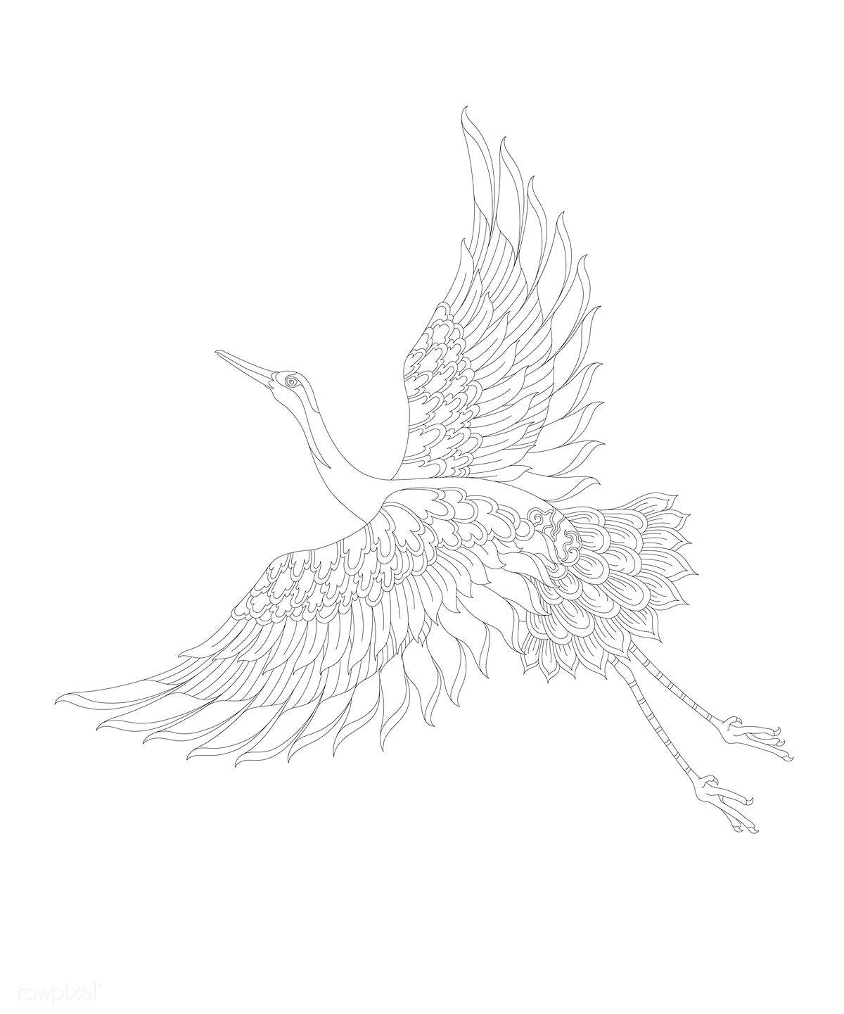 31+ Crane bird coloring page info
