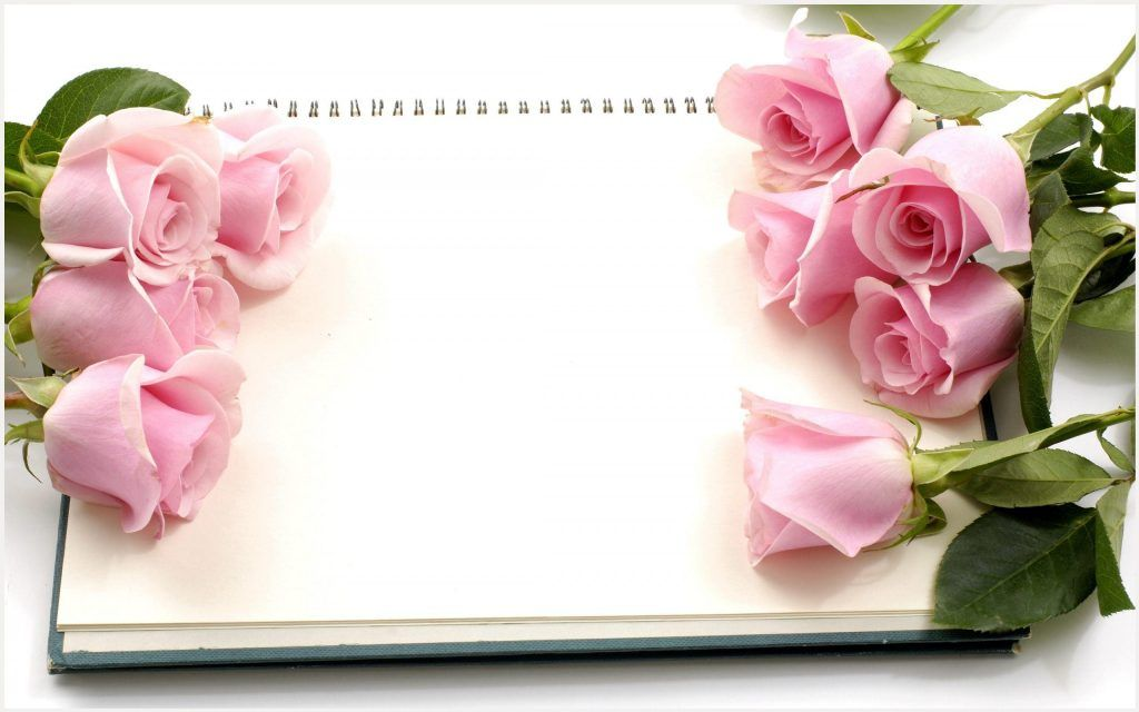 Pink Roses Flowers And Diary Wallpaper Pink Roses Flowers And Diary Wallpaper 1080p Pink Roses Flower Rose Flower Wallpaper Flower Download Flower Wallpaper