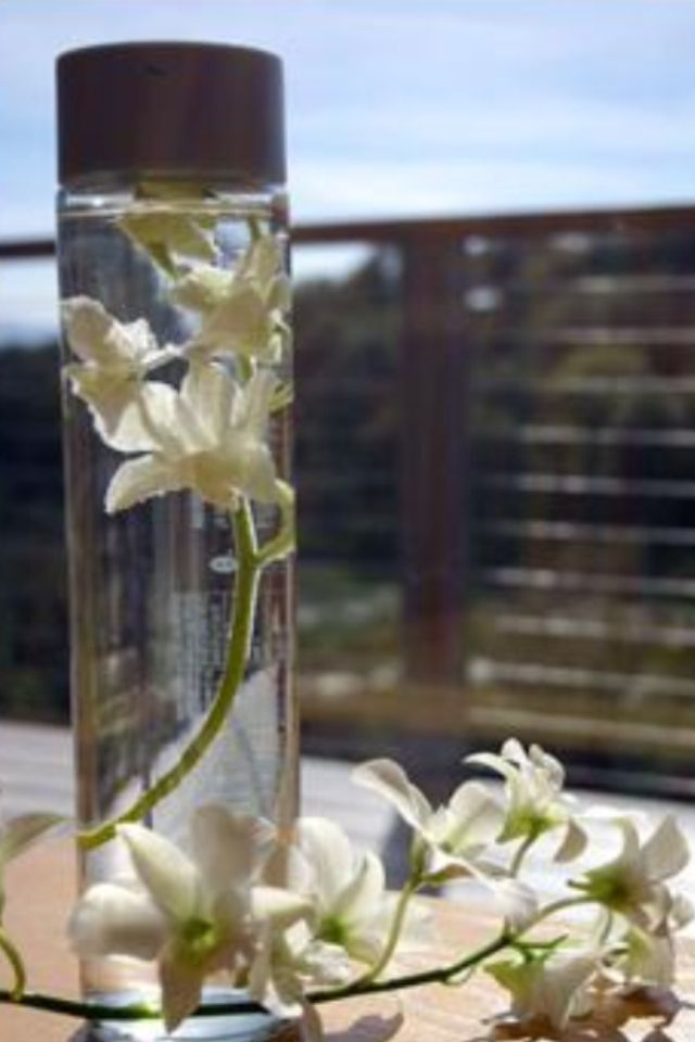 Upcycle Voss water bottle | • G A R D E N • | Water bottle