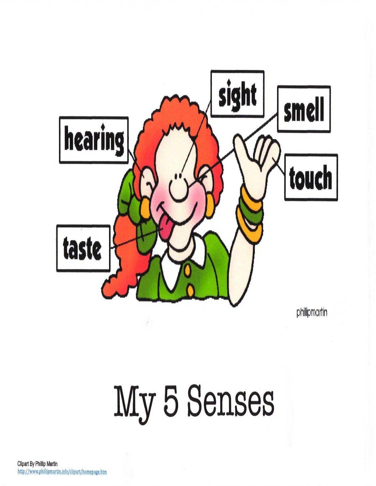 My 5 Senses Anchor Chart