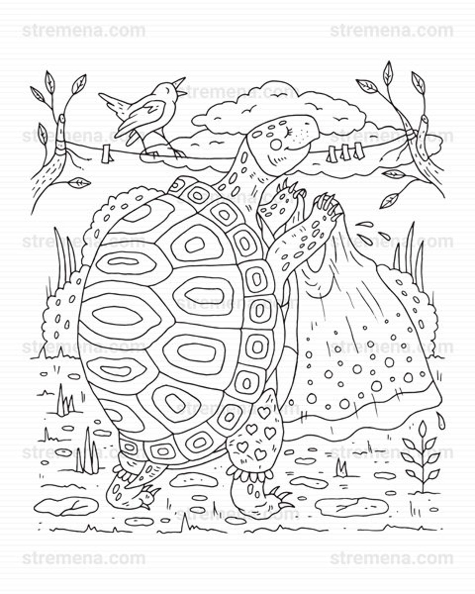 Frog Coloring Pages Pdf