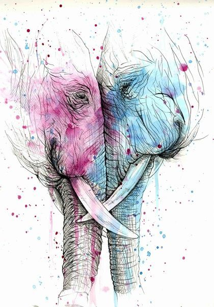 Psyca. #art #illustration #painting #drawing #ink #watercolour #elephants #tusk #love #together