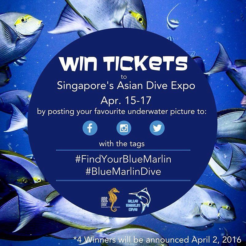 #Win tickets to #ADEX2016 the Asian Dive Expo at the Suntec Center in Singapore on April 15-17th by posting your favourite underwater photo with the tags #bluemarlindive and #findyourbluemarlin on Instagram Facebook or Twitter by April 2nd! Good luck!!!