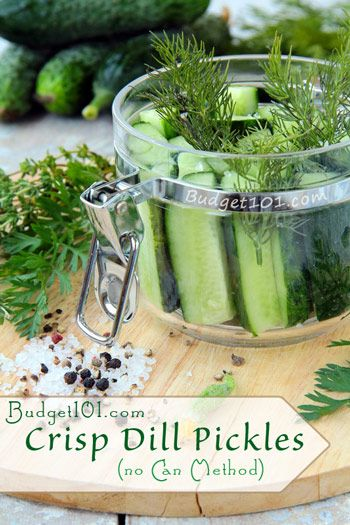 Overnight Crisp Dill Pickles | Home Canning
