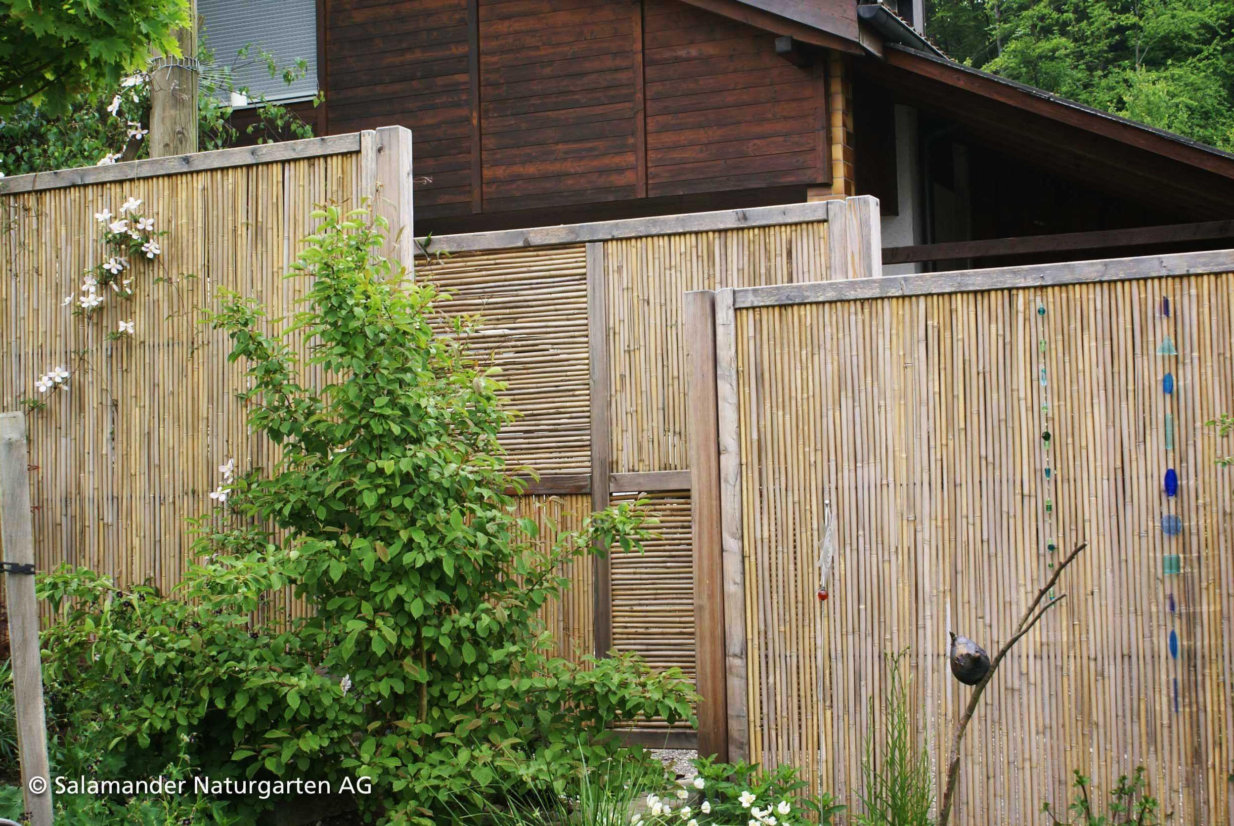Mehrere Sichtschutzelemente Aus Schilf Welche Allmahlich Mit Kletterpflanzen Bewachsen Werden Fences Fencesidea Haus Und Garten Sichtschutzelemente Garten