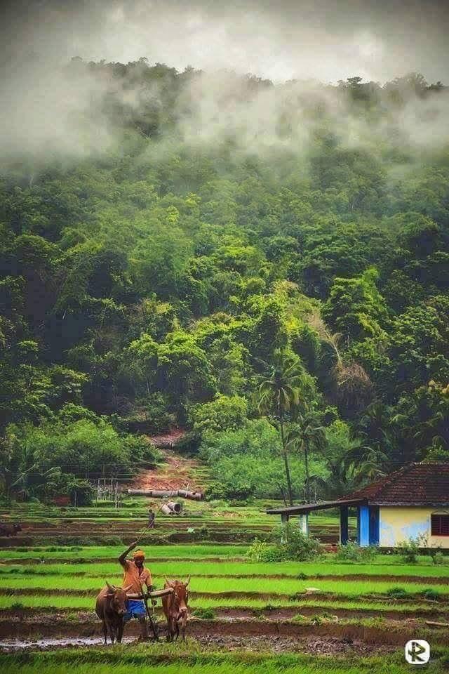 Rural Karnataka India India Photography Beautiful Places To Visit Nature Images