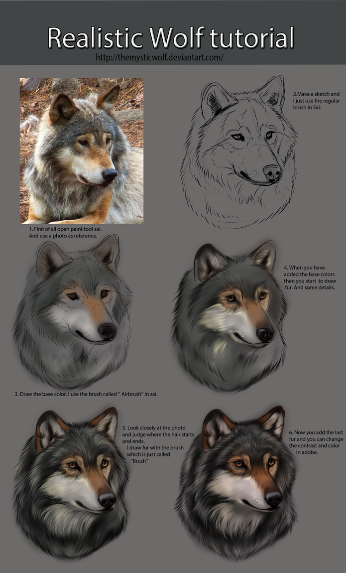 Photo of Realistic Wolf Tutorial by TheMysticWolf on DeviantArt