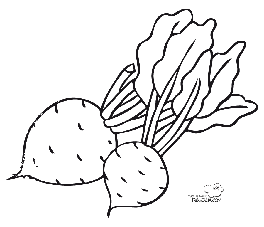 Rabanos - Dibujalia - Dibujos para colorear - Elementos y Objetos ...