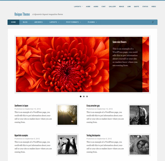 This free responsive magazine WordPress theme has a clean design ...