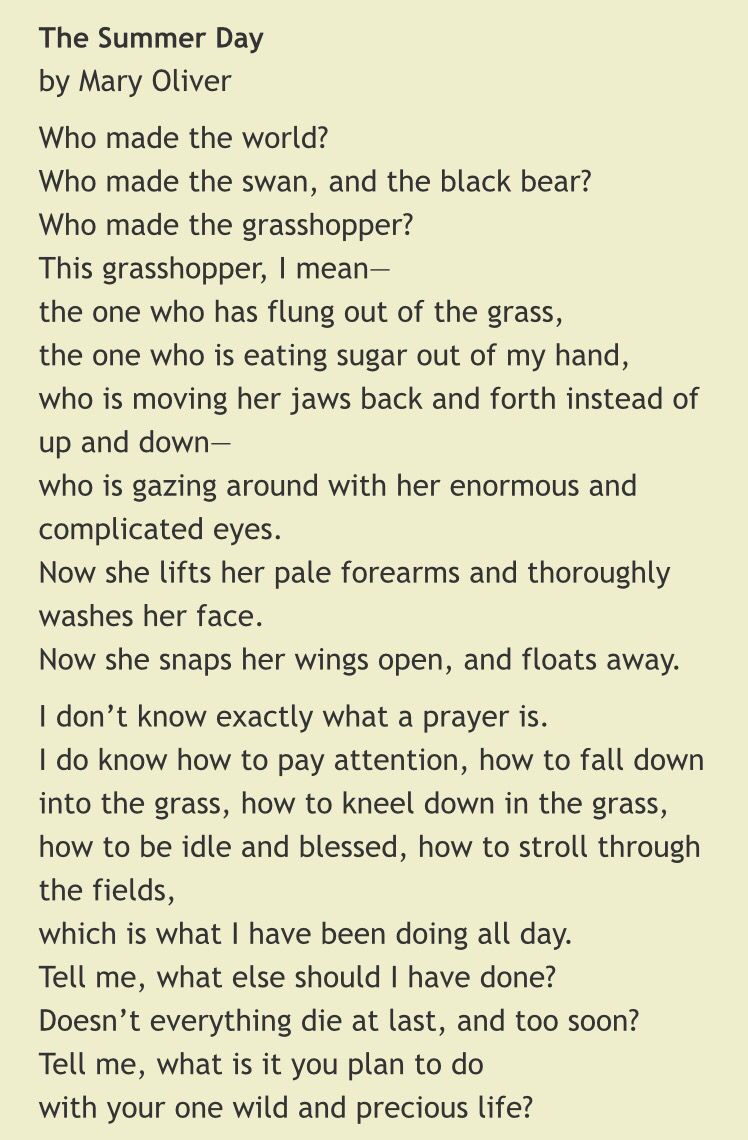 The Summer Day by Mary Oliver