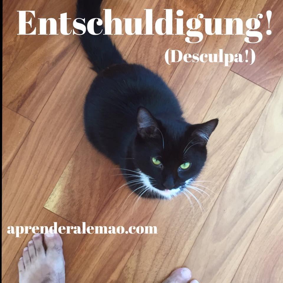 """A palavra """"Entschuldigung"""" tem a mesma lógica do português na sua formação. O núcleo da palavra é """"Schuld"""" (culpa) + ig = """"schuldig"""" (culpado). Ao adjetivo foram acrescentados um prefixo (ent-) e um sufixo (-ung). O sufixo -ung forma substantivos abstratos em alemão. Já o prefixo ent- pode ter diversas funções. Neste caso, tem a mesma função do prefixo português des- (ou seja, o contrário ou a eliminação/ausência de algo). Culpa - desculpa. O adjetivo """"schuldig"""" é usado mais em contexto…"""