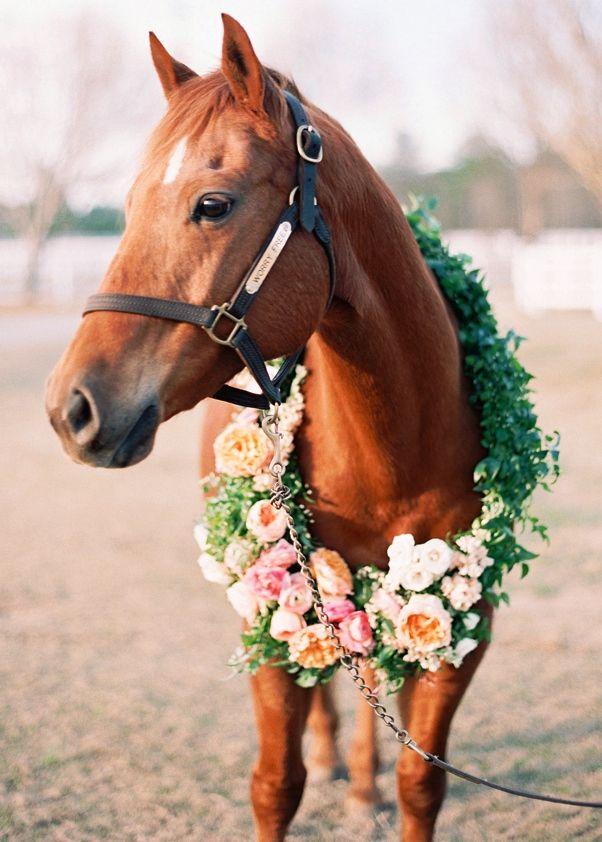 #Wedding #horse #flower wreath ToniK Flowers in their ...