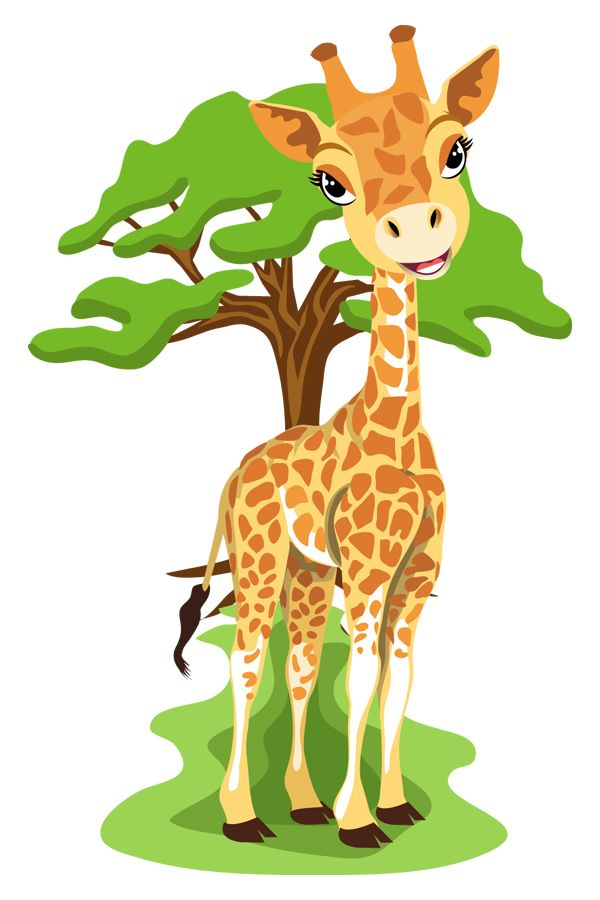 Жираф в картинках для детей, цените каждое