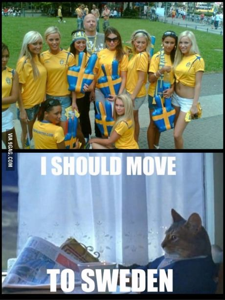 memes funny Swedish girl