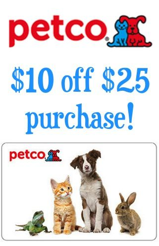 Petco 10 Off Your 25 Purchase Score A Deal On Toys Treats Or Accessories For Your Dogs Cats Birds And Little Friends Baby Pigs Cute Funny Animals Pet Beds