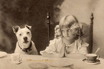 Girl With A Dog New 4x6 Vintage Postcard Image Photo Print CE133