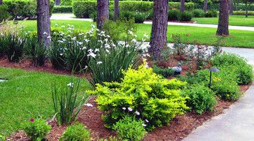 Florida Landscaping Northern Inspired Landscape Design For Tampa